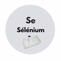 kit-test-selenium